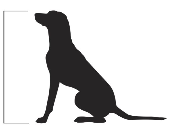 Measure Your Dog's Height